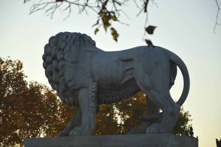 Le lion n'est pas mort ce soir