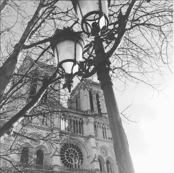 notre-dame-cathedrale-paris