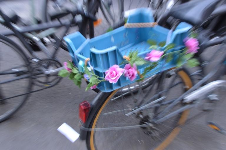 Zooming - Roses sur un vélo