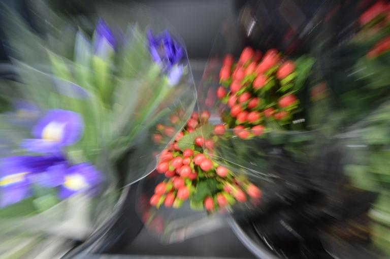 Zooming - bouquets de fleurs