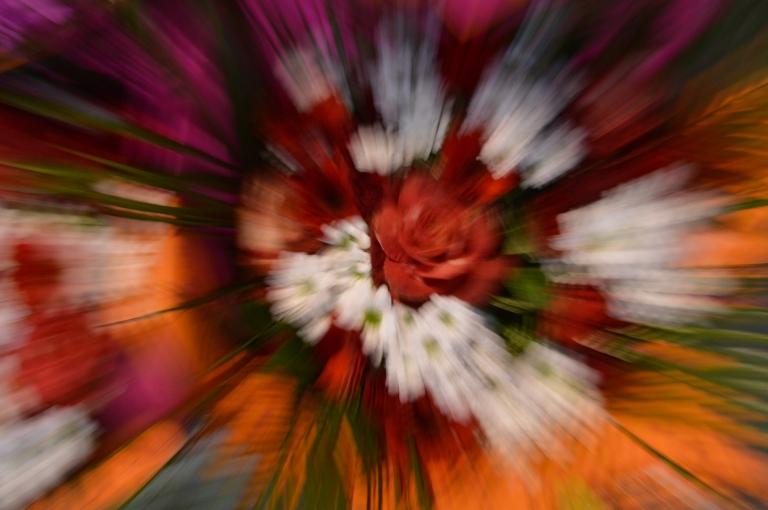 Zooming - Explosion de fleurs