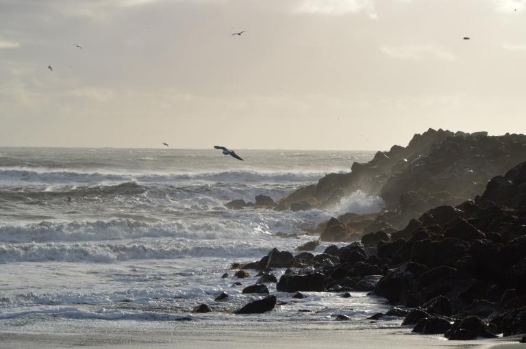 Océan déchaîné, vu de la plage de Vik