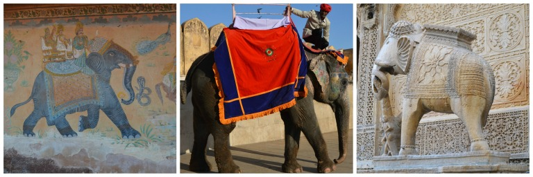 Éléphants en Inde