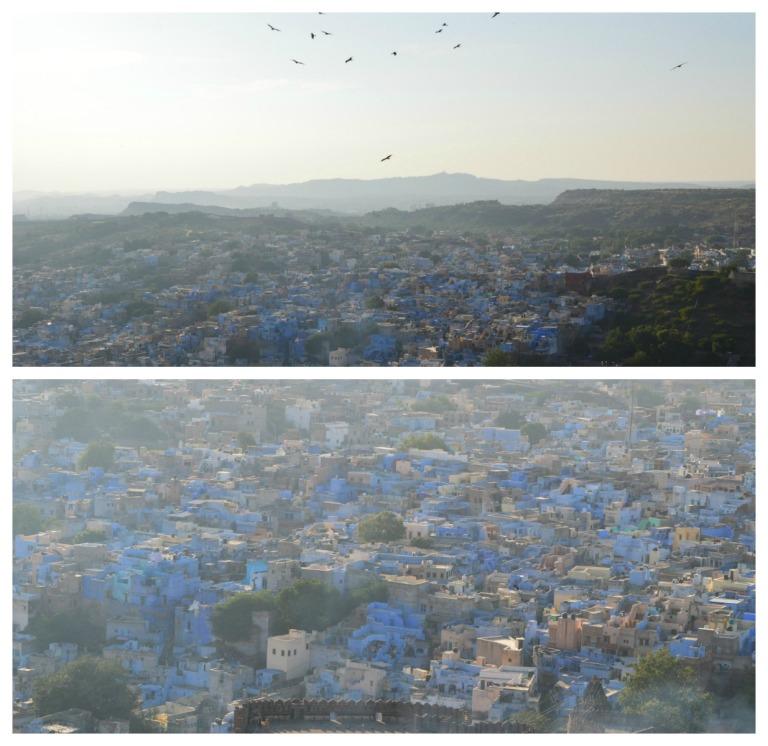 Jodhpur, la magnifique ville bleue