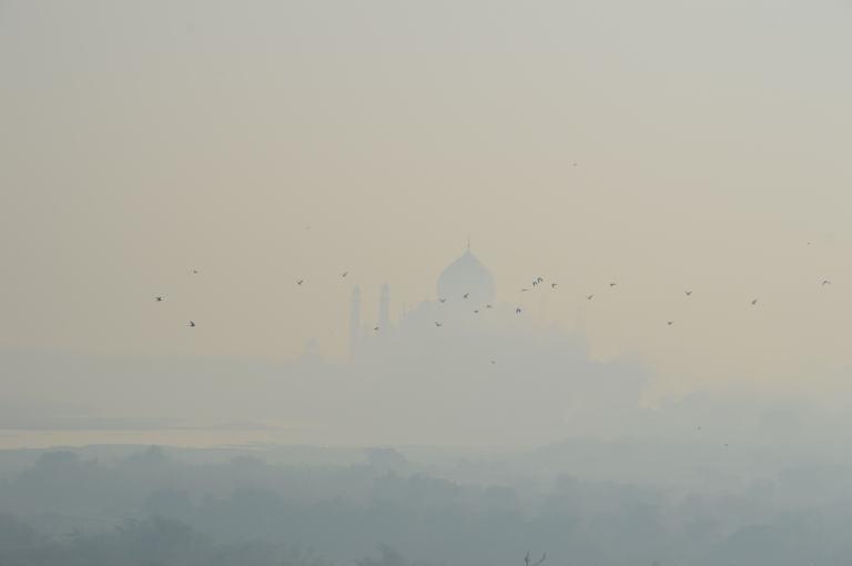 L'éveil du Taj Mahal