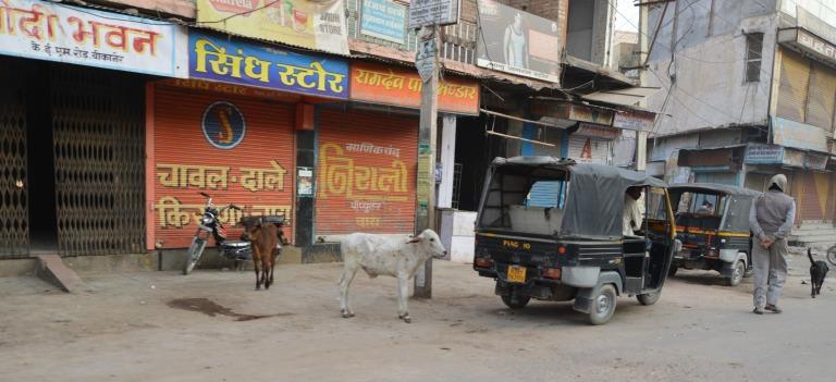 Dans les rues indiennes